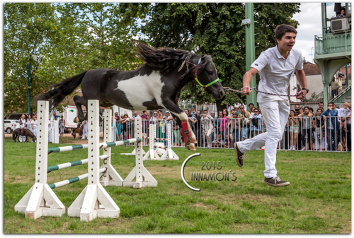 Celtic, obstacle Vichy 2015